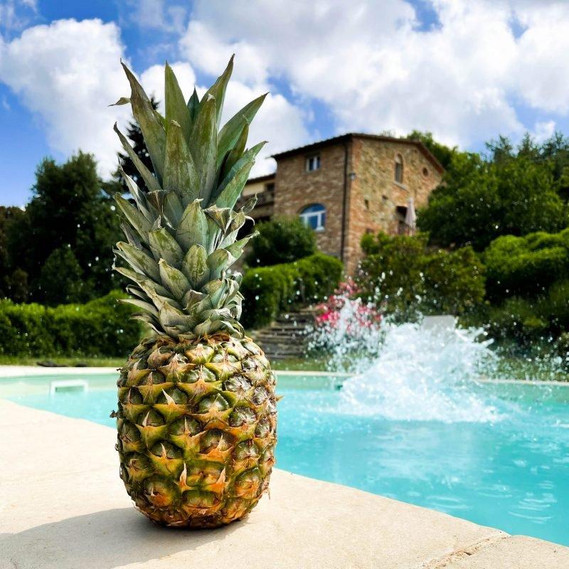 pynappel zwembad italie vakantie